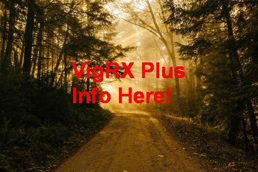 Jual VigRX Plus Di Medan