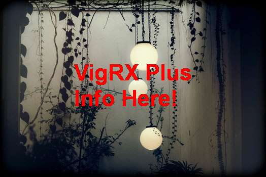 VigRX Plus Lelong