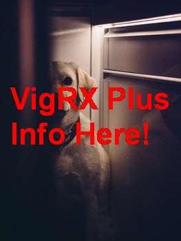 Erfahrungen Mit VigRX Plus