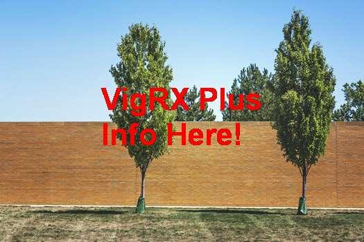 Venta De VigRX Plus En Guatemala