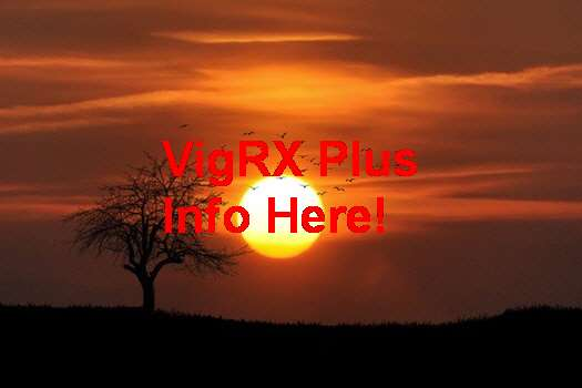 VigRX Plus In Kerala