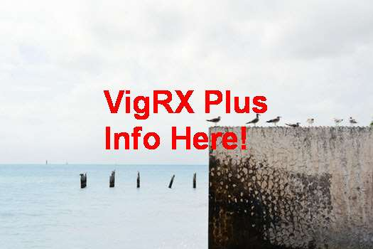 Where To Buy VigRX Plus In Uae