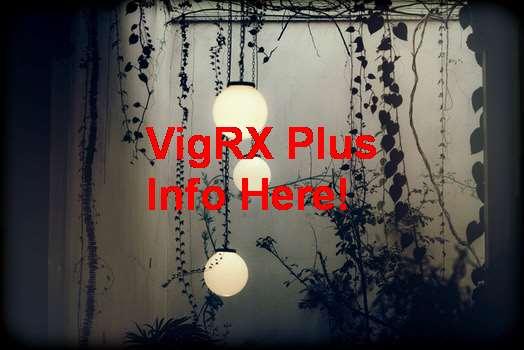 Distributor Resmi VigRX Plus Di Indonesia