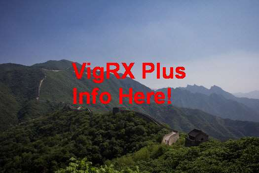 Pt VigRX Plus Indonesia
