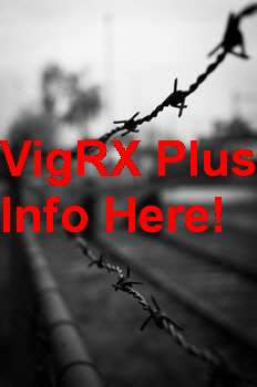 Where To Buy VigRX Plus In Moldova