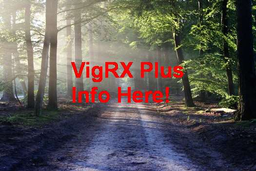 Free VigRX Plus Sample